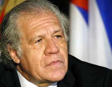 13 países rechazan declaraciones del titular de la OEA contra canciller de México