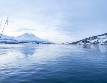 Hielo Ártico comienza a derretirse dos veces más rápido de lo esperado: expertos