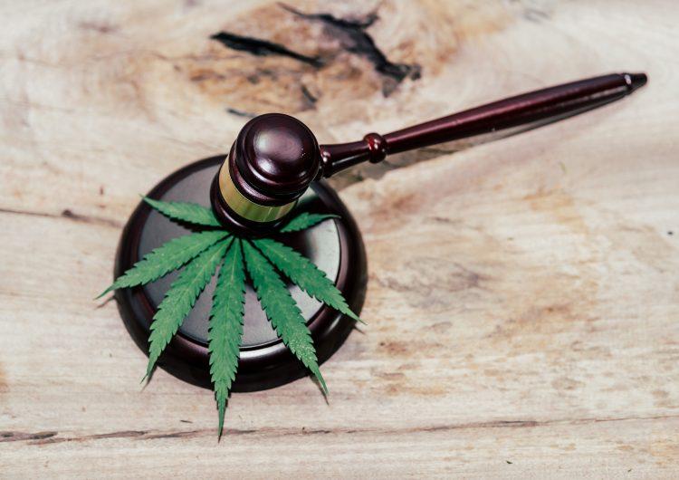 Suprema Corte de México legaliza el uso lúdico de la mariguana