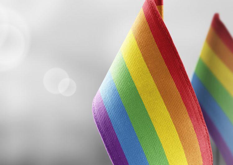 Las empresas y la diversidad e inclusión laboral de la comunidad LGBT+