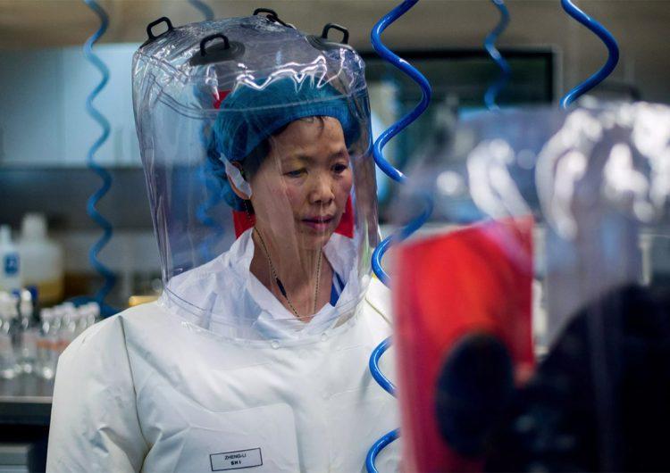 Descubridora del coronavirus: no hice nada malo en el Instituto de Virología de Wuhan