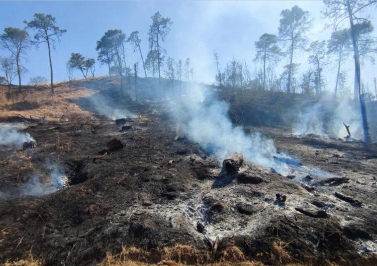 Incendios forestales, poca precipitación pluvial y vientos fuertes azotan al país