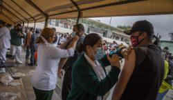 Covid-19: México suma 342 nuevos decesos; la cifra total alcanza…