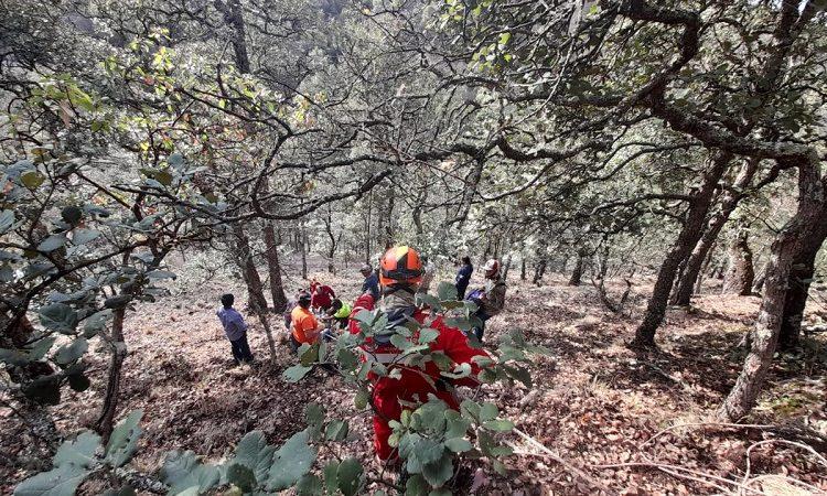 Hombre de 70 años cae a un barranco de la Sierra Fría; lo trasladan en helicóptero