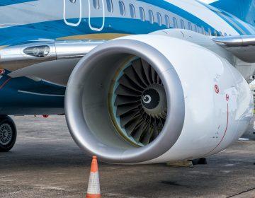 Boeing 737 realiza un amaraje forzoso en Honolulu por parvada de gansos salvajes