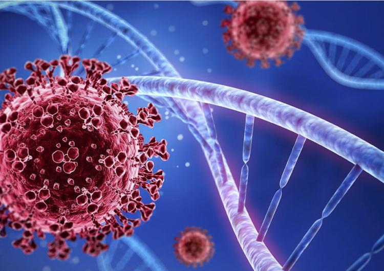 Variante Épsilon podría disminuir eficacia de vacunas contra covid-19: estudio