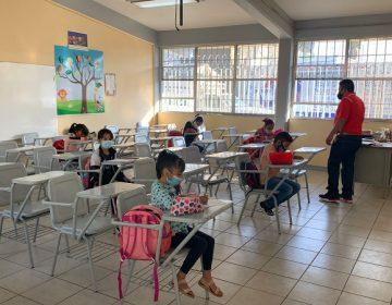A partir del lunes se podrán consultar en línea calificaciones de educación básica