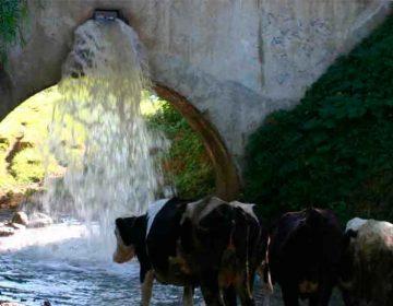 Pese a denuncias, Conagua ignora extracción ilegal de agua en Puebla