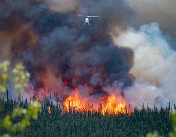 Canadá y EU continúan con incendios atizados por el cambio climático