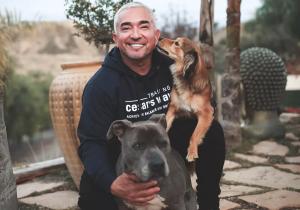 'He entrenado a los perros de Jennifer López y Oprah, y sé de perros que viajan en aviones privados'