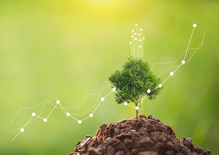 Las compañías sustentables son las más rentables