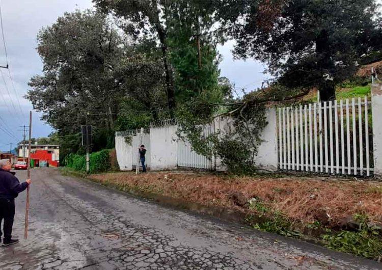 Grace dejó desgracias en 50 municipios de Puebla; Barbosa pidió ayuda a Obrador