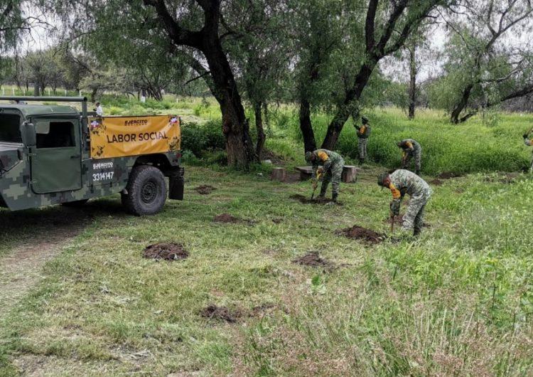 Actividades de reforestación por personal militar en el parque La Pona