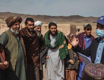 Gobierno afgano propone reparto de poder con talibanes a cambio del fin de la violencia