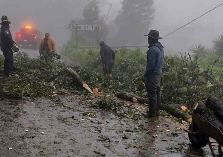 En la Sierra Norte, localidades de 15 municipios se quedan sin electricidad por Grace