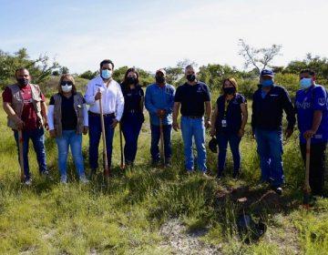 Más de 10 mil árboles han sido plantados en Aguascalientes en 2021