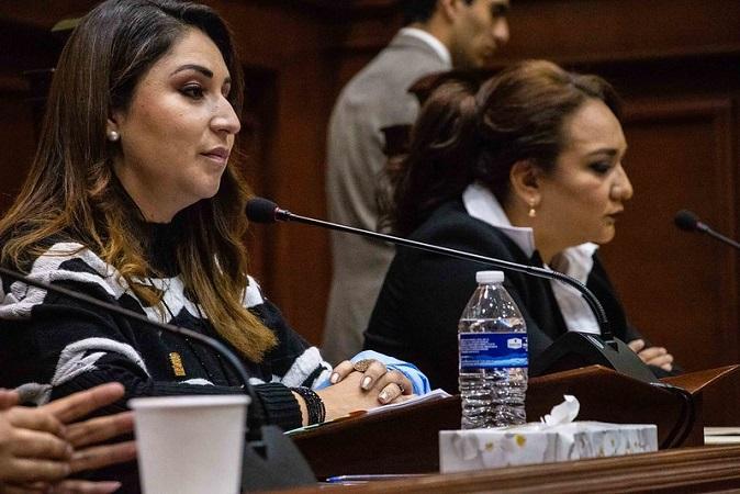 Resoluciones de la SCJN son un retroceso a los derechos humanos: diputada del PAN