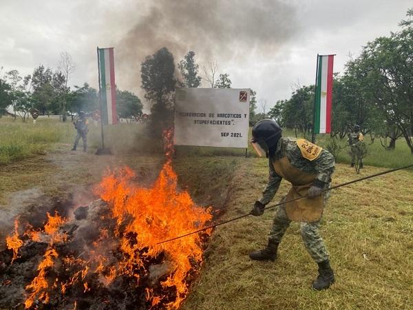 Destruye Ejército Mexicano 500 kg. de drogas en Aguascalientes