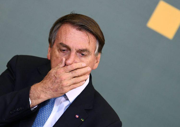 Brasil: demandan a presidente Bolsonaro ante Corte Internacional por deforestación de la Amazonia