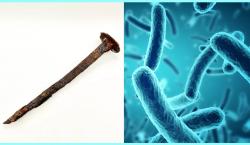 Leptospirillum: una bacteria que come metal y puede devorar un clavo en tres días