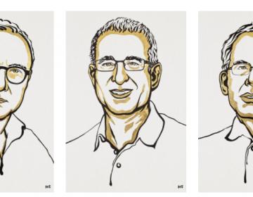 Premio Nobel de Economía para 3 expertos por sus aportes sobre el mercado laboral y experimentos naturales