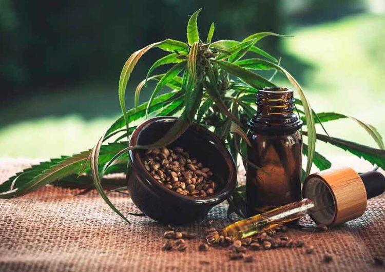 ¿Quieres invertir en cannabis? Este Congreso en Cancún te dice cómo hacerlo