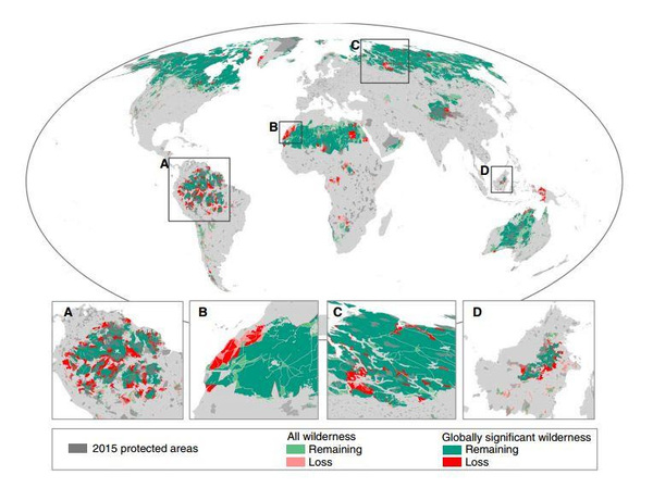 10% de áreas naturales de la tierra fueron destruidas en 20 años