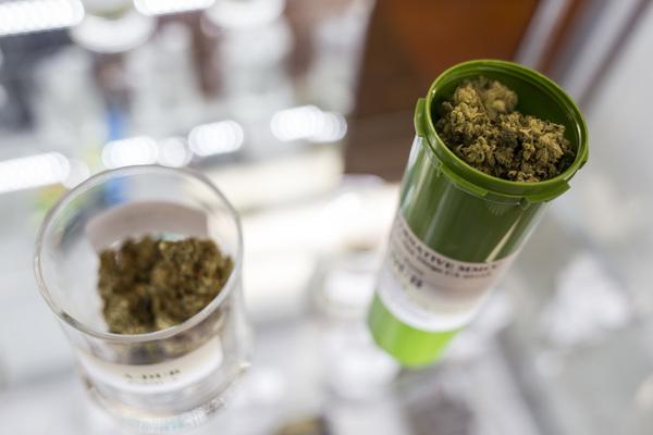 Fiebre por el cannabis
