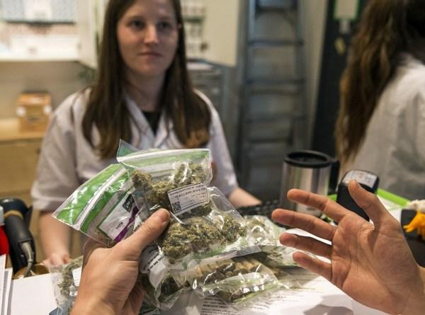 Marihuana medicinal: cómo evitar la adicción