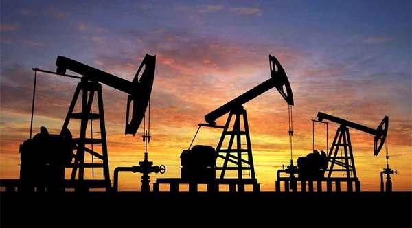 """""""Vital"""", la cooperación con países fuera del bloque: OPEP"""