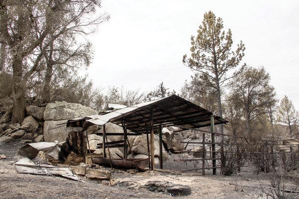 El incendio que amenaza la supervivencia de los kumiai