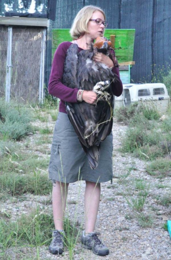 Dedica su vida a los buitres, y a que regresen a los Pirineos