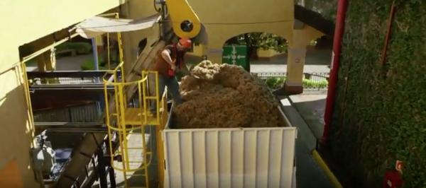 Ford y José Cuervo fabricarán piezas de autos con fibra de agave