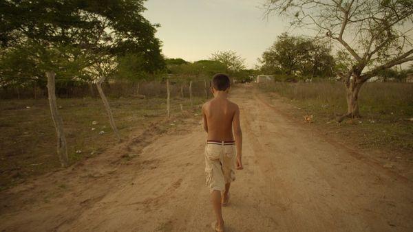 Ambulante: documentar el panorama global