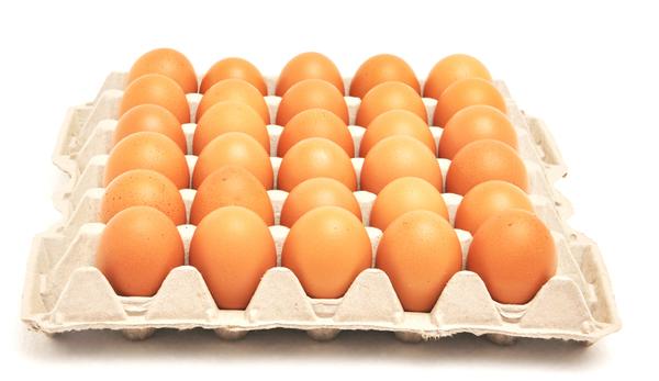 Registra central de abasto de Puebla noveno precio de huevo más bajo del país