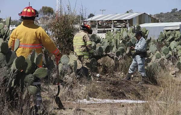 Ordeñadores de Puebla y Tlaxcala, tras Cuautepec: SP