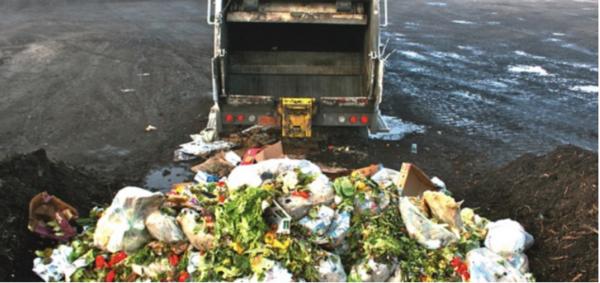 América Latina desperdicia hasta 348 000 toneladas de alimento al día: FAO