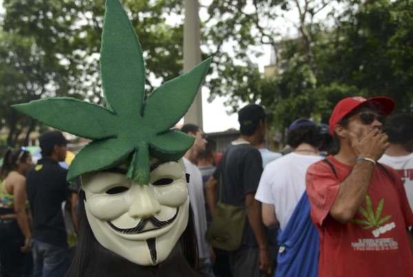 """Proponen la creación de un """"marihuanódromo"""" en Colombia"""
