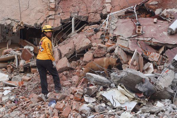 El Salvador envía grupo de rescate a México tras terremoto