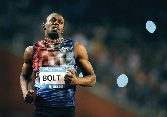 Bolt: a solas con Darwin