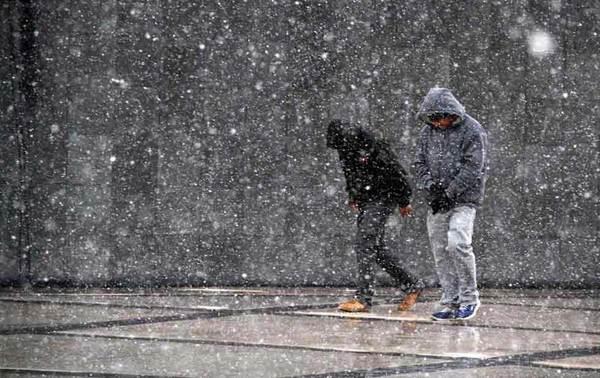 Declaran emergencia por nevada en ocho municipios