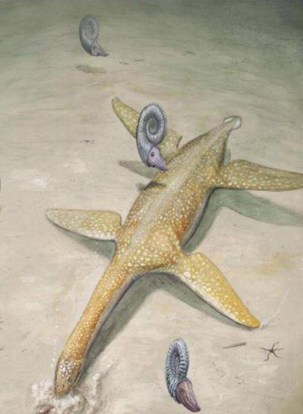 Hallan una antigua bestia marina