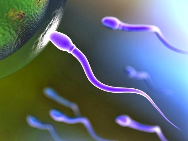 Crece la demanda de esperma post mortem