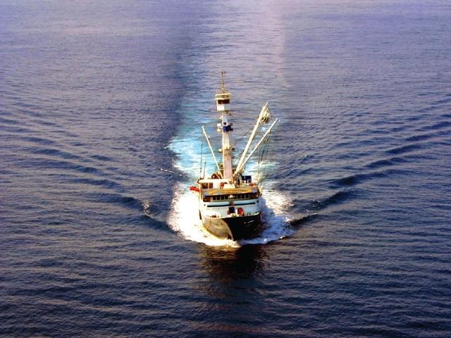 México vs. Estados Unidos: la guerra del atún
