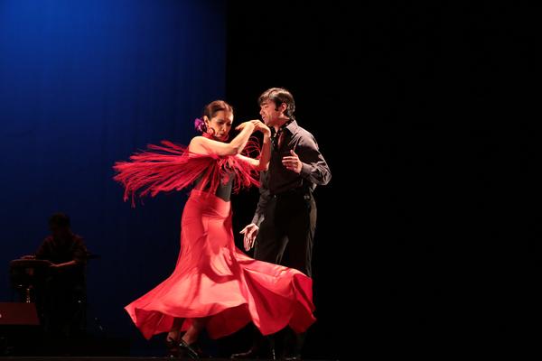¡Viva Flamenco! derrochará pasión en el Teatro de la Ciudad