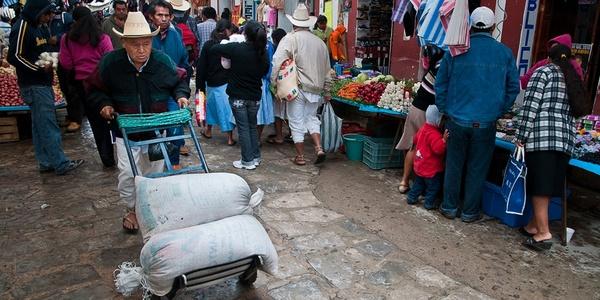 Venden guajolotes en plaza del jueves