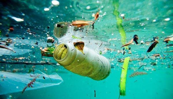 """A este ritmo, """"los océanos tendrán más plástico que peces"""""""