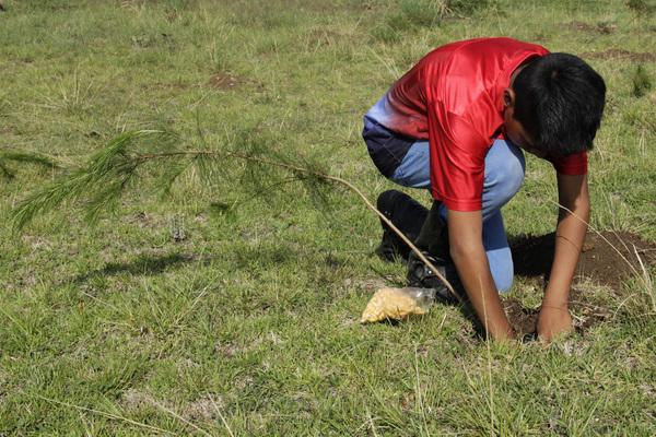 Anuncian jornada municipal de gestión ambiental