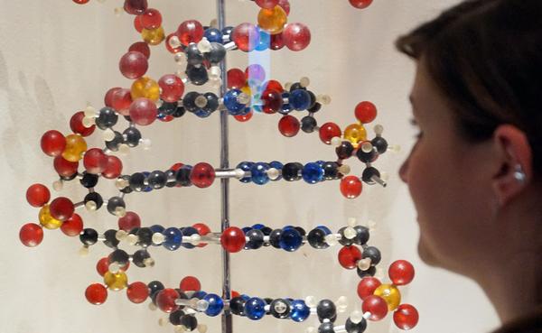 Avanza la posibilidad de manipular la genética del ADN humano
