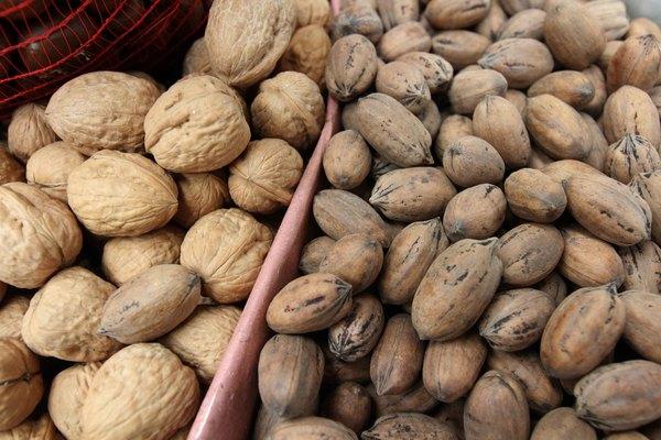 Nueces y cacahuates, secreto para rejuvenecer la piel y dar energía